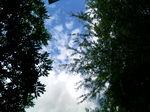 今日の東京の青空